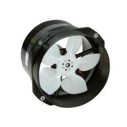 INOX PLUG 2P+T 220V. 32A...