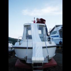 GREY LINE TAMER (PZ)
